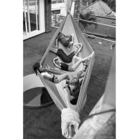 Vorschau: TICKET TO THE MOON Mammock Hammock - Hängematte royal blue-orange - Bild 3